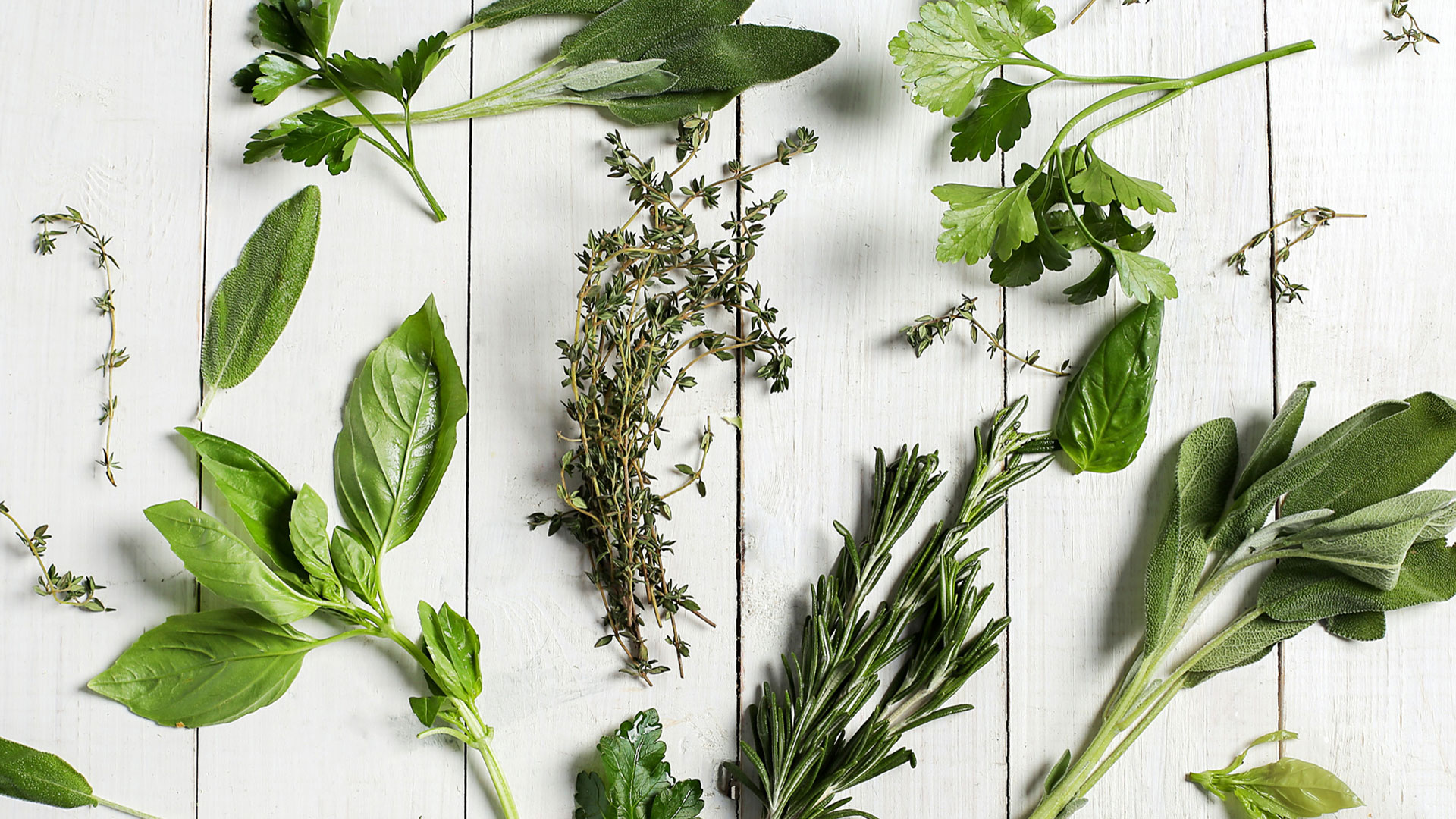 What herbs to grow and how to grow herbs